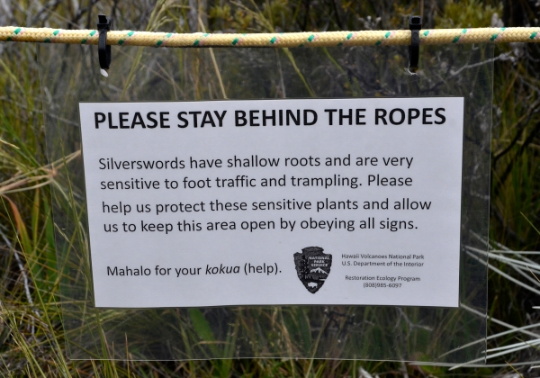 Please stay behind the ropes!