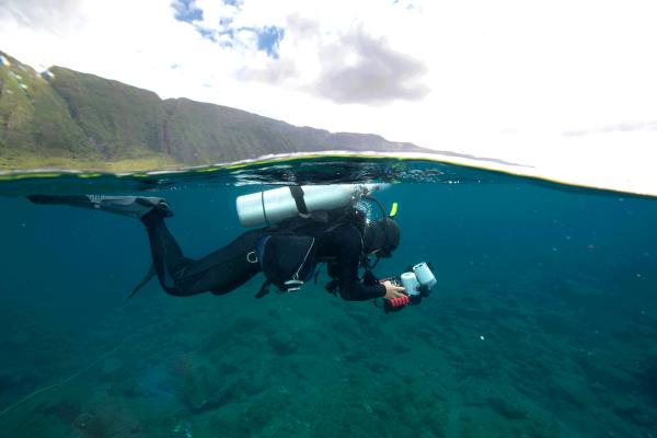 coral photos