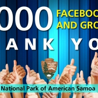 Solid 7,000 Facebook Likes