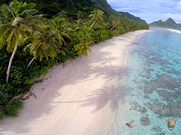 To'aga beach in the Ofu area of the National Park of American Samoa has characteristics of a good turtle nesting beach such as a gentle slope and expanses of sand.